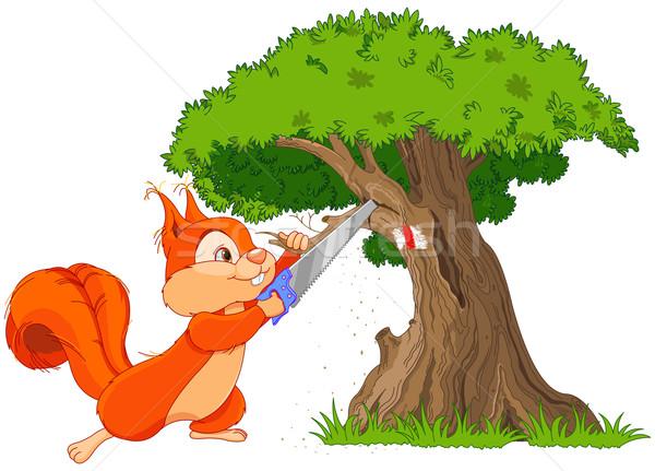 Divertente scoiattolo ramo illustrazione legno natura Foto d'archivio © Dazdraperma