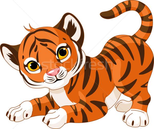 Tijger welp illustratie kat leuk Stockfoto © Dazdraperma