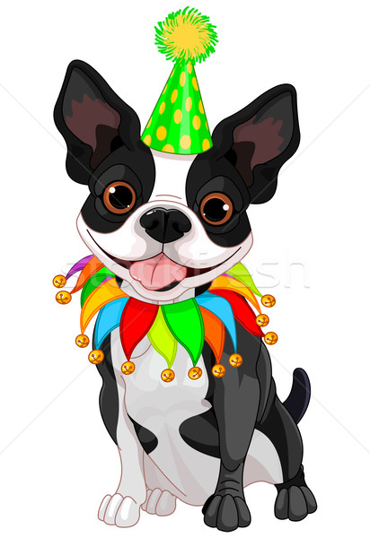 Boston Terrier Birthday Stock photo © Dazdraperma