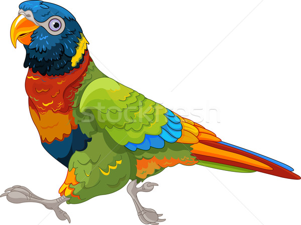 Lopen papegaai illustratie kunst veer lopen Stockfoto © Dazdraperma