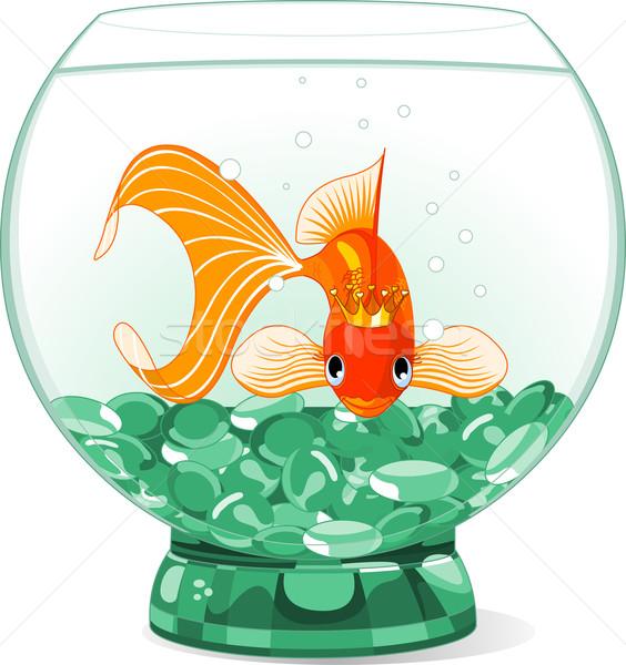 Cartoon Goldfish reine aquarium illustration heureux Photo stock © Dazdraperma
