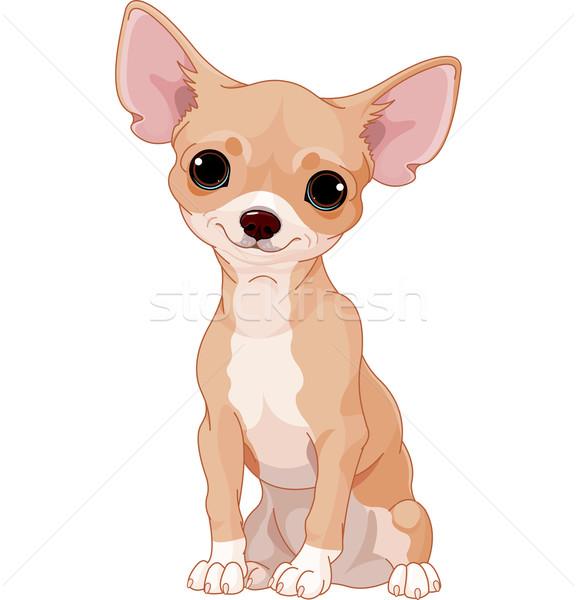 Sevimli Köpek Hayvanlar çizim Resim Vektör Ilüstrasyonu