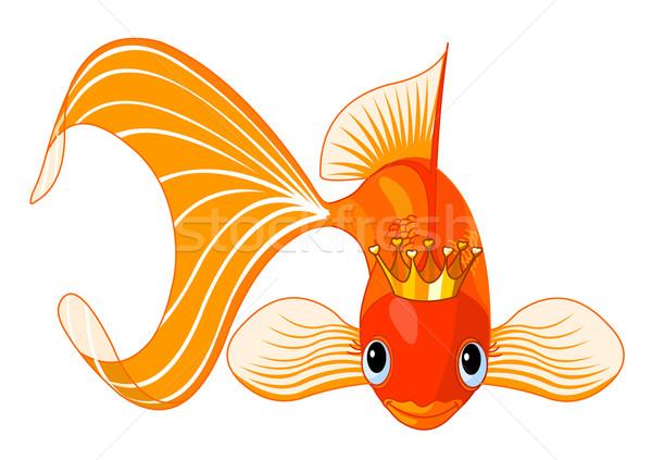 Goldfisch Königin Illustration glücklich schönen Tiara Stock foto © Dazdraperma
