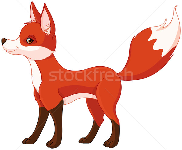 Rouge Fox illustration cute chien orange Photo stock © Dazdraperma