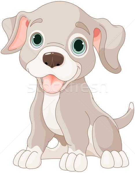 Aranyos kutyakölyök illusztráció rajz jókedv kártya Stock fotó © Dazdraperma