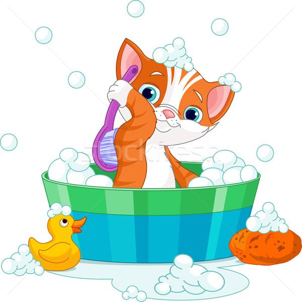 Cat having a  bath Stock photo © Dazdraperma