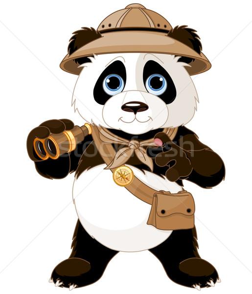 Panda Safari Explorer Stock photo © Dazdraperma