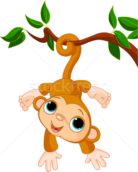 Baby monkey on a tree  Stock photo © Dazdraperma