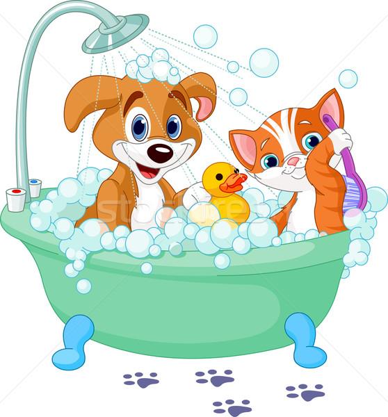 Dog and Cat  having a bath Stock photo © Dazdraperma