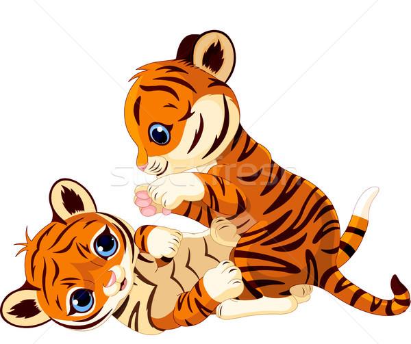 Cute tijger welp twee baby Stockfoto © Dazdraperma