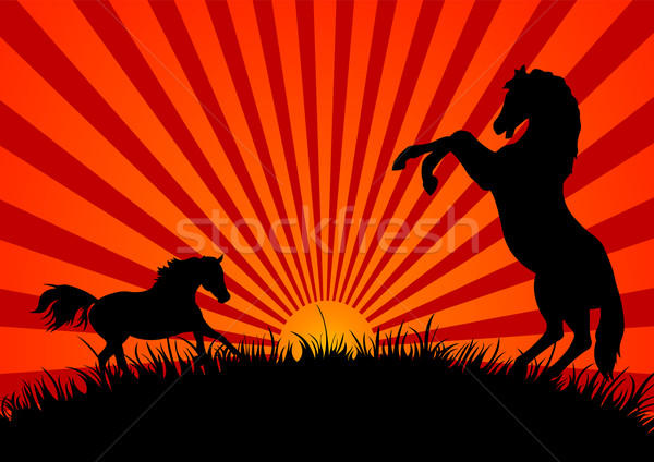 Two Horses at Sunset Stock photo © Dazdraperma