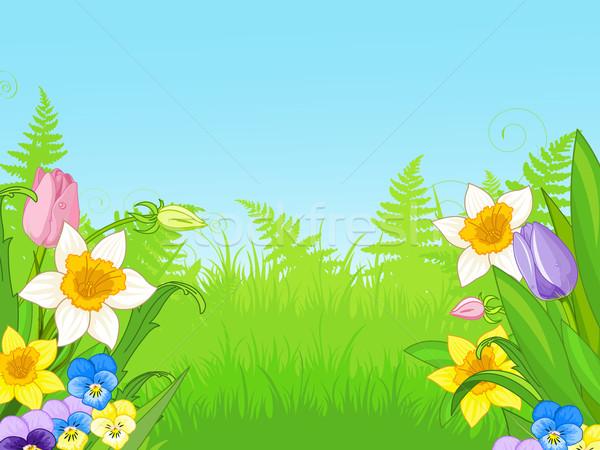 Illustratie weide bloem steeg tuin Stockfoto © Dazdraperma