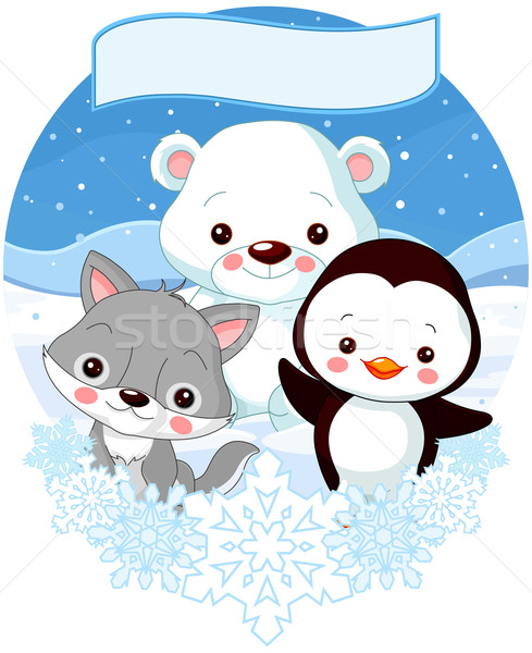 North Pole Animals Stock photo © Dazdraperma