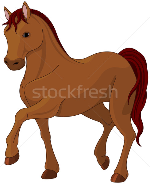 Purebred horse Stock photo © Dazdraperma