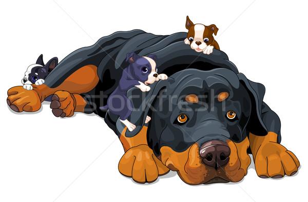 Rottweiler család illusztráció gyönyörű művészet vicces Stock fotó © Dazdraperma