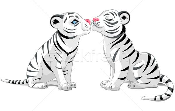 Two White Tigers in Love Stock photo © Dazdraperma