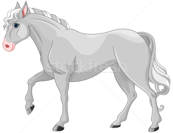 Grey Horse Stock photo © Dazdraperma