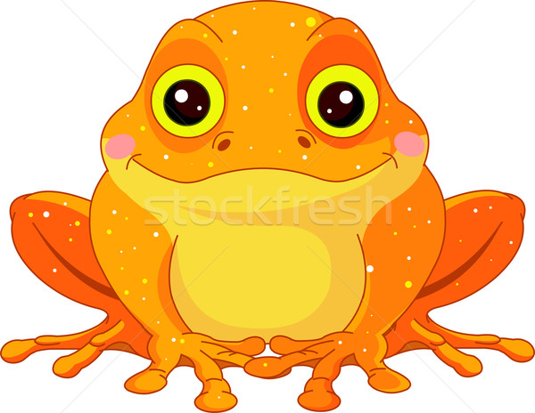 Fun zoo. Golden Toad Stock photo © Dazdraperma