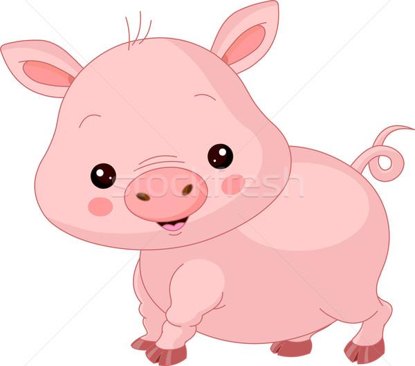 农场里的动物 猪 插图 可爱 快乐 农场 商业照片 dazdraperma
