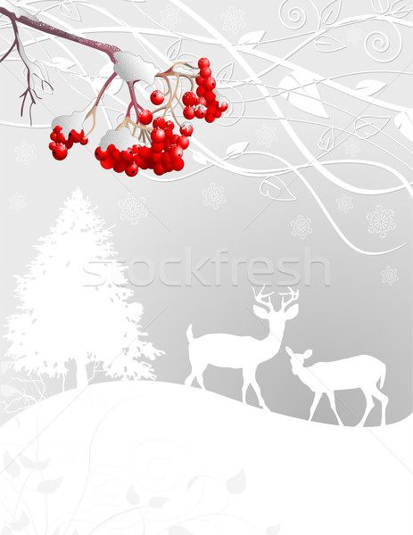 Winter scene Stock photo © Dazdraperma
