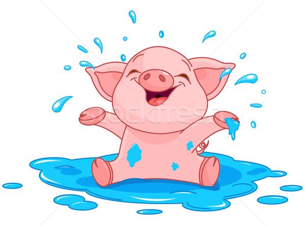 Piggy in a puddle Stock photo © Dazdraperma