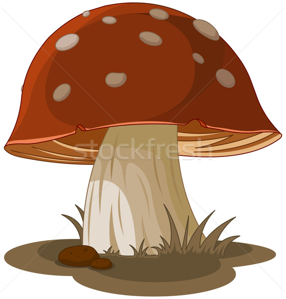 Magic Mushroom Stock photo © Dazdraperma
