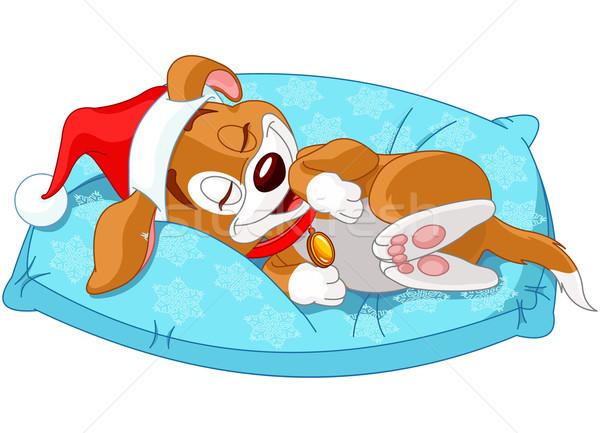 Bonitinho natal cãozinho mentiras travesseiro jovem Foto stock © Dazdraperma