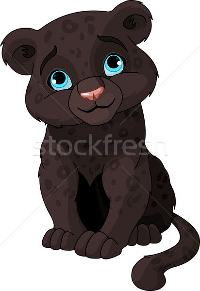 Black panther cub Stock photo © Dazdraperma