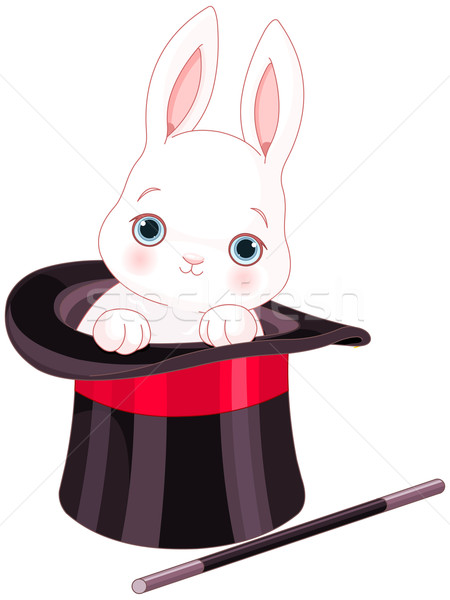 Rabbit in Top Hat Magic Trick Stock photo © Dazdraperma