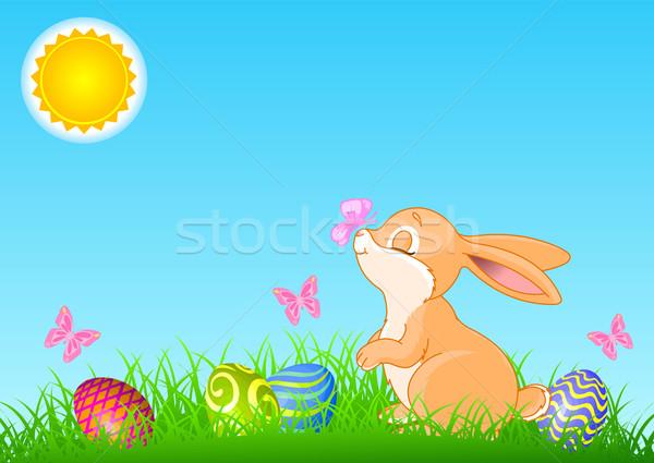 Easter Bunny cute permanente gekleurde eieren alle objecten Stockfoto © Dazdraperma