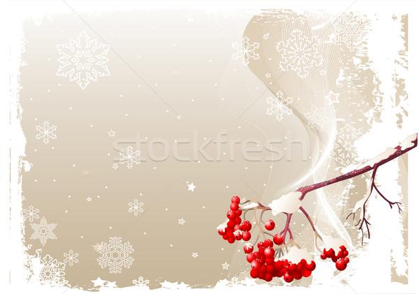 Kül kış örnek grunge Stok fotoğraf © Dazdraperma