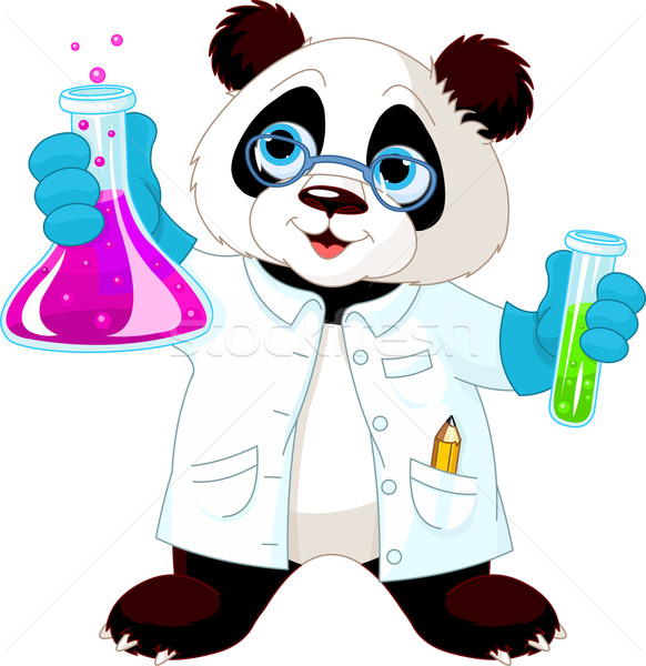 Panda Scientist Stock photo © Dazdraperma