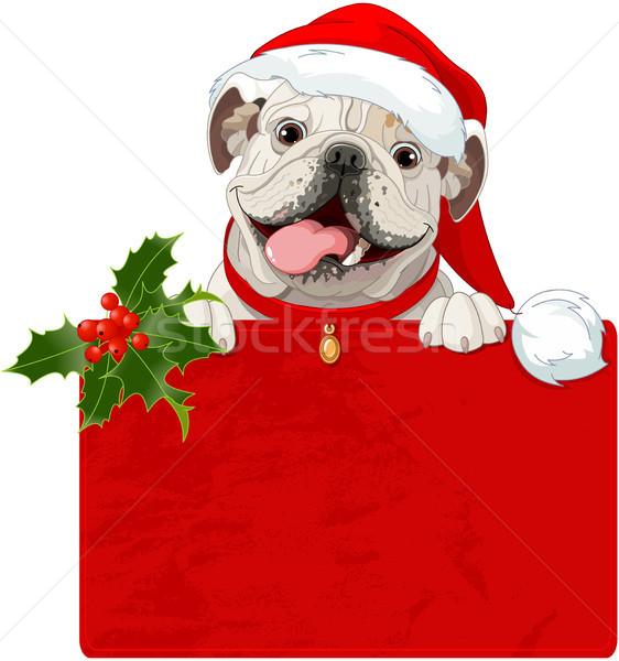Christmas English bulldog  Stock photo © Dazdraperma