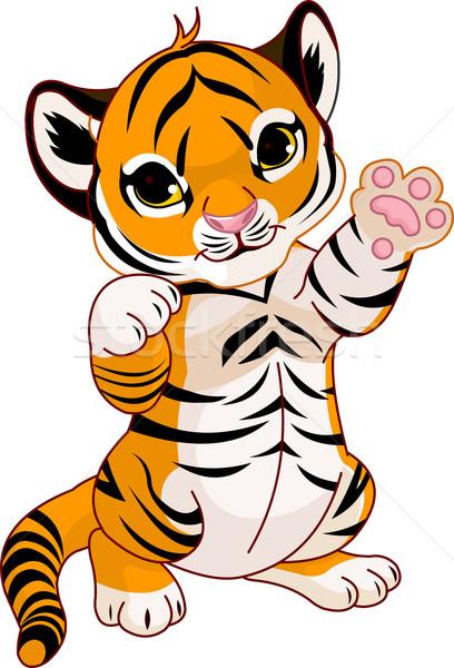Cute playful tiger cub Stock photo © Dazdraperma