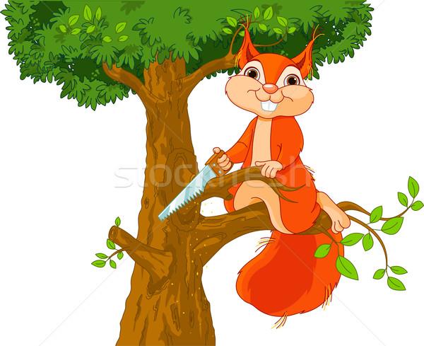 Funny ardilla rama ilustración madera naturaleza Foto stock © Dazdraperma