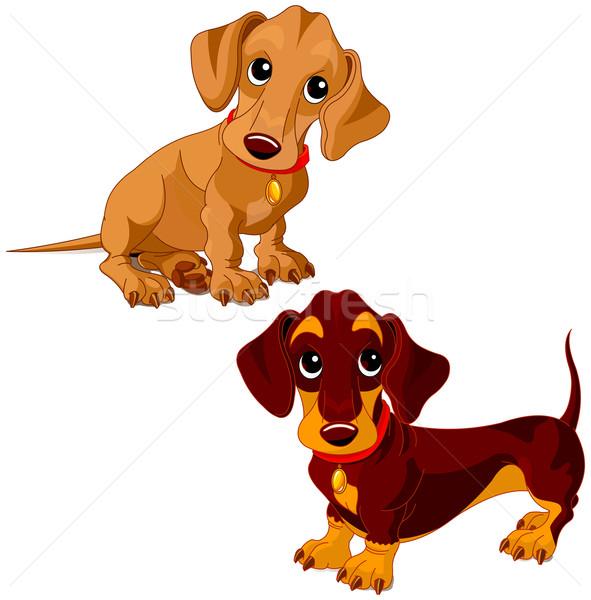 Ilustração dois bonitinho cão arte vermelho Foto stock © Dazdraperma