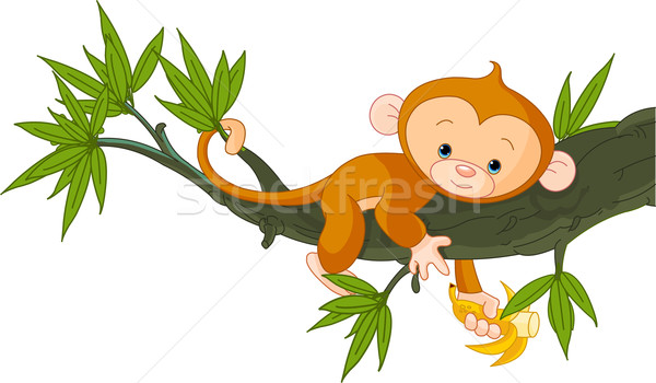 Bébé singe arbre cute banane Photo stock © Dazdraperma