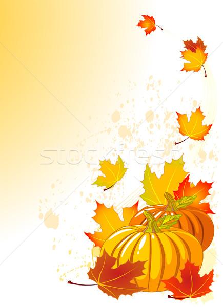 Autumn Pumpkins Stock photo © Dazdraperma