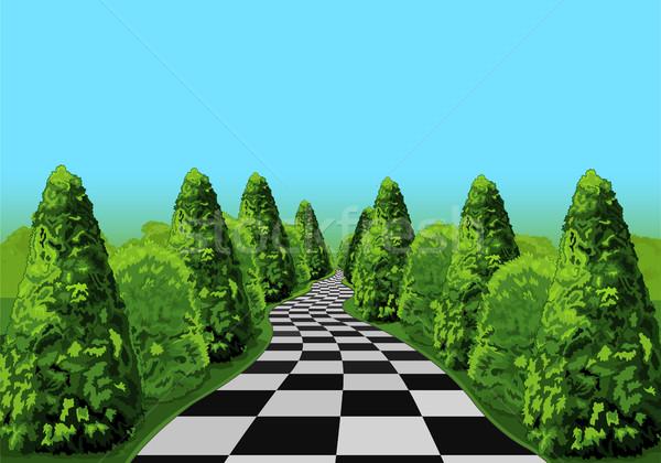 страна чудес дороги долго небе дерево пейзаж Сток-фото © Dazdraperma