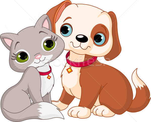1266908 кошки собака друзей пару смешные