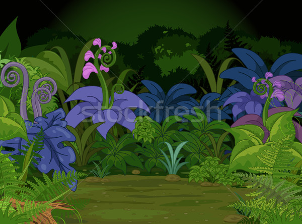 Jungle Landscape Stock photo © Dazdraperma