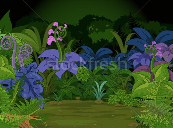 Dżungli krajobraz wiele inny roślin kwiaty Zdjęcia stock © Dazdraperma