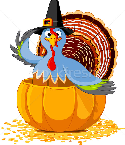 Thanksgiving Turkey in the  pumpkin Stock photo © Dazdraperma