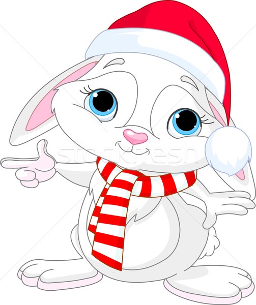 Weinig christmas konijn wijzend hoed sjaal Stockfoto © Dazdraperma