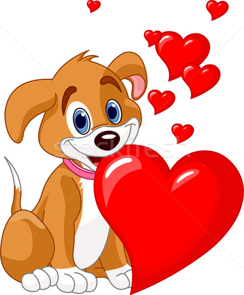 Puppy holding a red heart in her mouth Stock photo © Dazdraperma