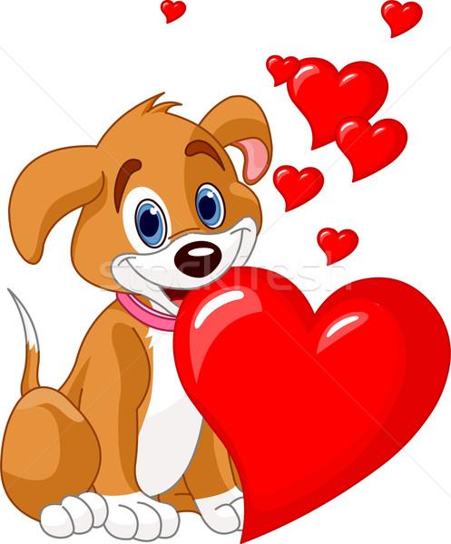Puppy Rood hart mond cute Stockfoto © Dazdraperma
