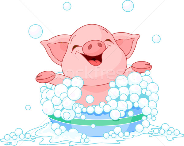 Porcelet bain cute bébé porc Photo stock © Dazdraperma
