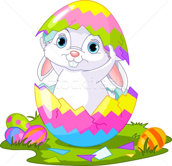 Easter Bunny springen uit ei cute gebroken Stockfoto © Dazdraperma