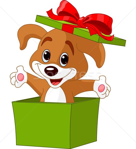 Chiot sautant sur boîte coffret cadeau vert Photo stock © Dazdraperma