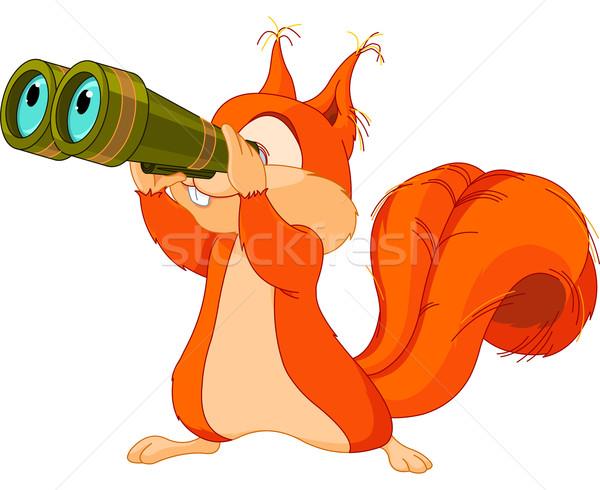 Squirrel observer Stock photo © Dazdraperma